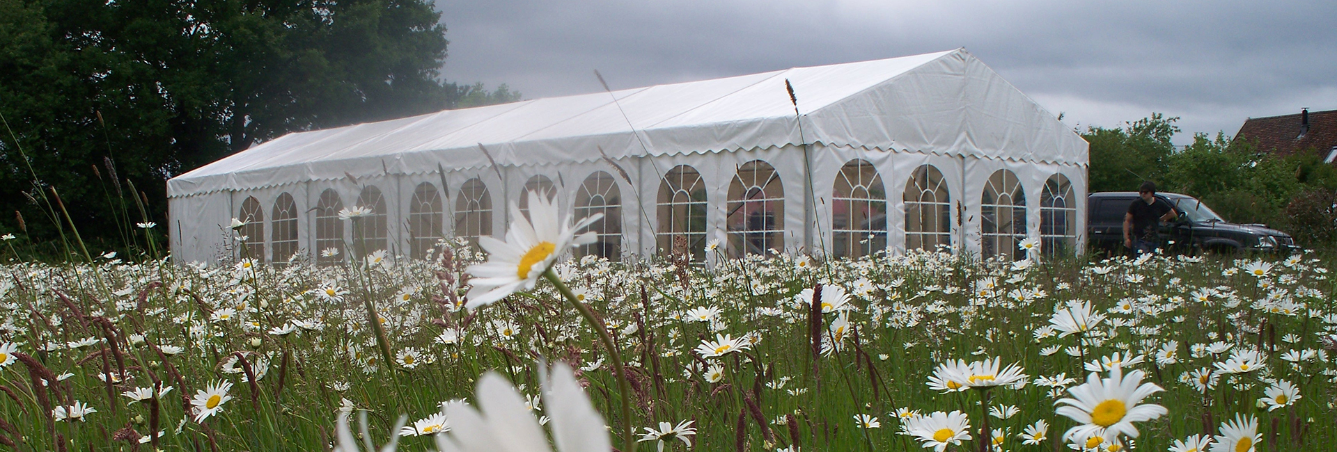 marquee in feild of flowers rent a party tent suffolk and essex