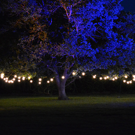 external festoon lighting